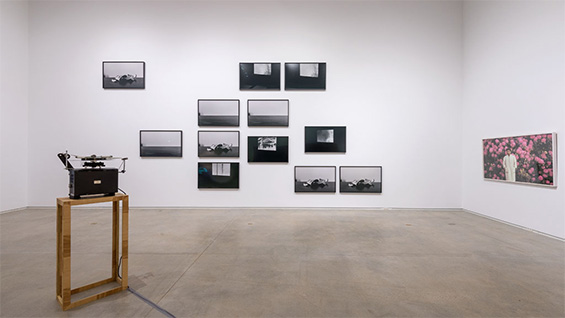 Time/Image (2015). Installation image courtesy of the artist and Blaffer Art Museum, University of Houston, Houston, Texas