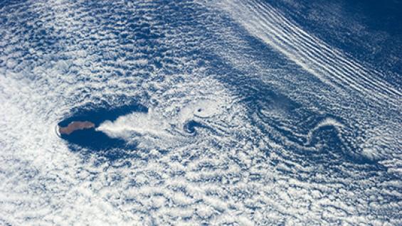 Satelite image of Guadalupe Island, photo by NASA