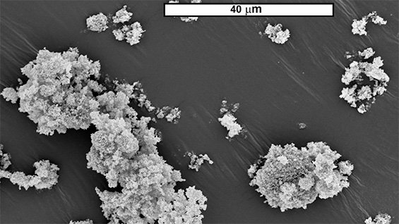 Scanning Electron Microscope image of titanium dioxide nanoparticles. Image courtesy of Daniel Lepek