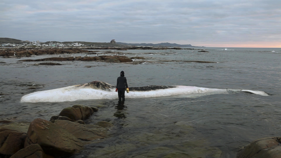 Patty Chang, Still from Invocations for a Wandering Lake, Part I, 2015, Video Projection, color, sound, TRT 12:49; installation dimensions variable. Courtesy the artist and BANK/MABSOCIETY