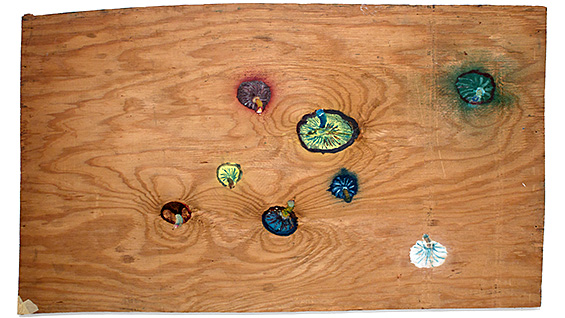 Bill Lynch. Untitled (Seven Mushrooms), n.d. Oil on wood.