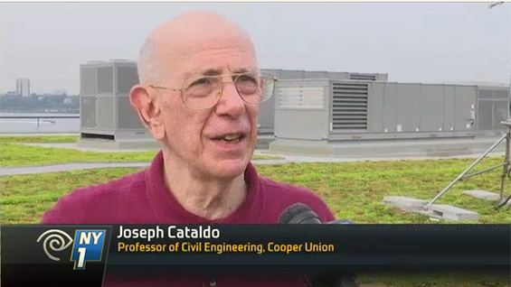 Professor Joseph Cataldo on NY1