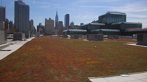 The green roof atop the Jacob Javits Center