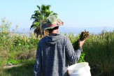 Ofek (a raw vegan born and raised in Amirim), pictured foraging for food, Galilee